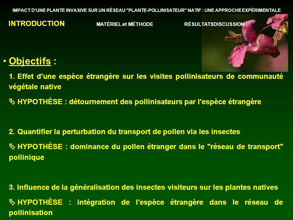 Objectifs : 1.Effet d une espèce étrangère sur les visites pollinisateurs de communauté végétale native HYPOTHÈSE : détournement des pollinisateurs par l espèce étrangère 2.Quantifier la perturbation du transport de pollen via les insectes HYPOTHÈSE : dominance du pollen étranger dans le réseau de transport pollinique 3.