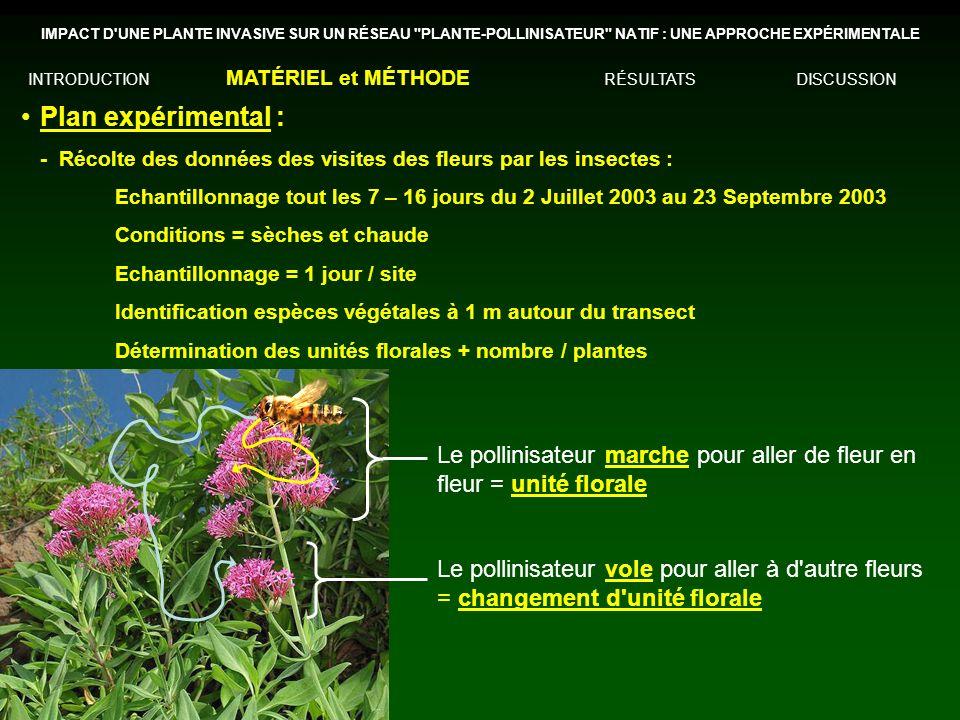 Plan expérimental : -Récolte des données des visites des fleurs par les insectes : Echantillonnage tout les 7 – 16 jours du 2 Juillet 2003 au 23 Septe