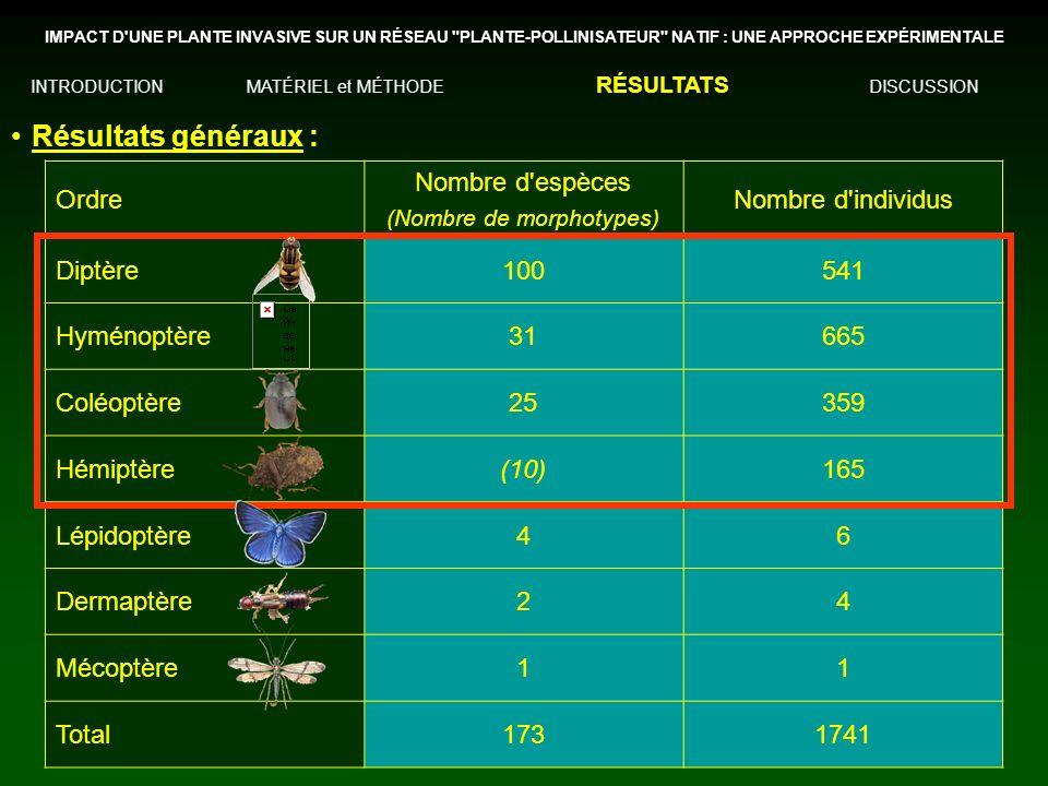 Résultats généraux : Ordre Nombre d espèces (Nombre de morphotypes) Nombre d individus Diptère100541 Hyménoptère31665 Coléoptère25359 Hémiptère(10)165 Lépidoptère46 Dermaptère24 Mécoptère11 Total1731741 IMPACT D UNE PLANTE INVASIVE SUR UN RÉSEAU PLANTE-POLLINISATEUR NATIF : UNE APPROCHE EXPÉRIMENTALE INTRODUCTIONMATÉRIEL et MÉTHODE RÉSULTATS DISCUSSION