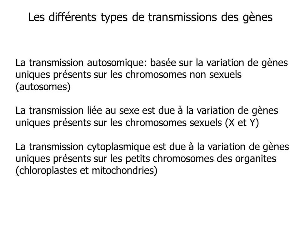 La transmission autosomique: basée sur la variation de gènes uniques présents sur les chromosomes non sexuels (autosomes) La transmission liée au sexe est due à la variation de gènes uniques présents sur les chromosomes sexuels (X et Y) La transmission cytoplasmique est due à la variation de gènes uniques présents sur les petits chromosomes des organites (chloroplastes et mitochondries) Les différents types de transmissions des gènes