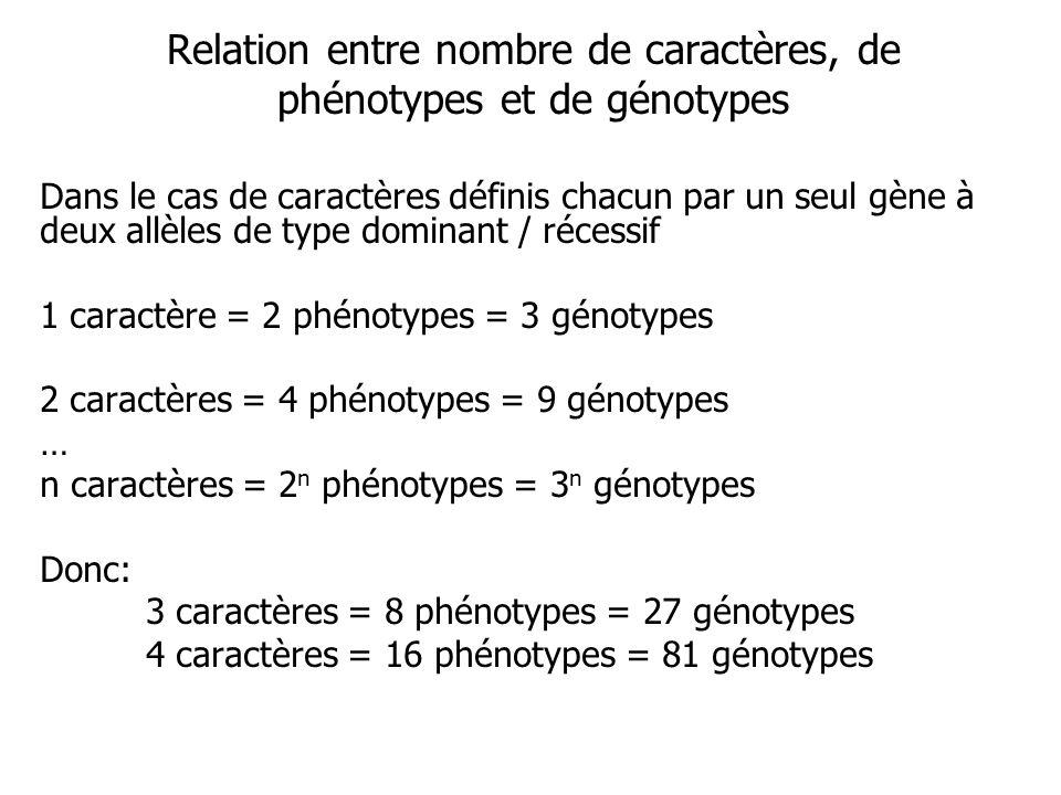 Relation entre nombre de caractères, de phénotypes et de génotypes Dans le cas de caractères définis chacun par un seul gène à deux allèles de type dominant / récessif 1 caractère = 2 phénotypes = 3 génotypes 2 caractères = 4 phénotypes = 9 génotypes … n caractères = 2 n phénotypes = 3 n génotypes Donc: 3 caractères = 8 phénotypes = 27 génotypes 4 caractères = 16 phénotypes = 81 génotypes