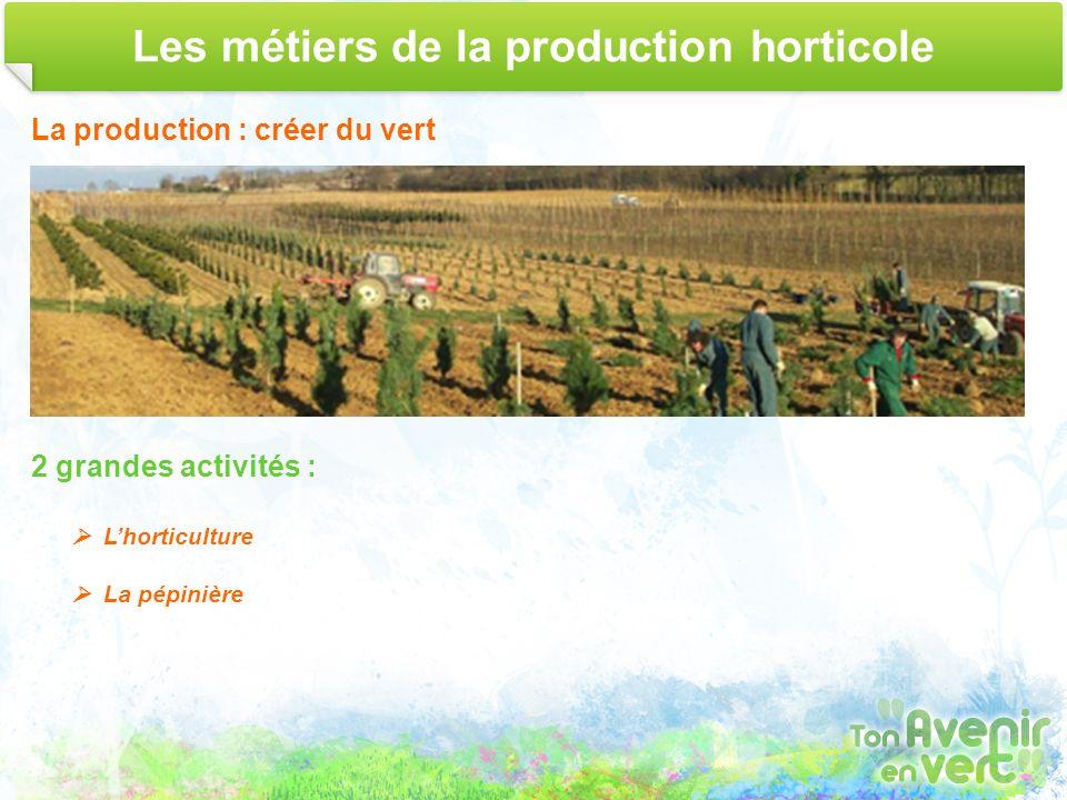 Les métiers de la production horticole La production : créer du vert 2 grandes activités : Lhorticulture La pépinière