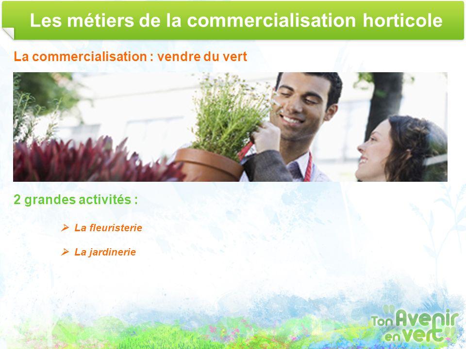 Les métiers de la commercialisation horticole La commercialisation : vendre du vert 2 grandes activités : La fleuristerie La jardinerie