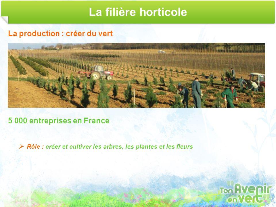 La filière horticole La production : créer du vert 5 000 entreprises en France Rôle : créer et cultiver les arbres, les plantes et les fleurs