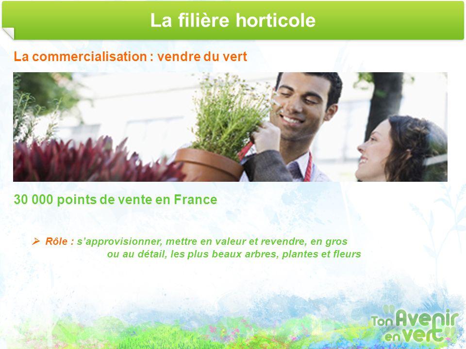 La filière horticole La commercialisation : vendre du vert 30 000 points de vente en France Rôle : sapprovisionner, mettre en valeur et revendre, en g