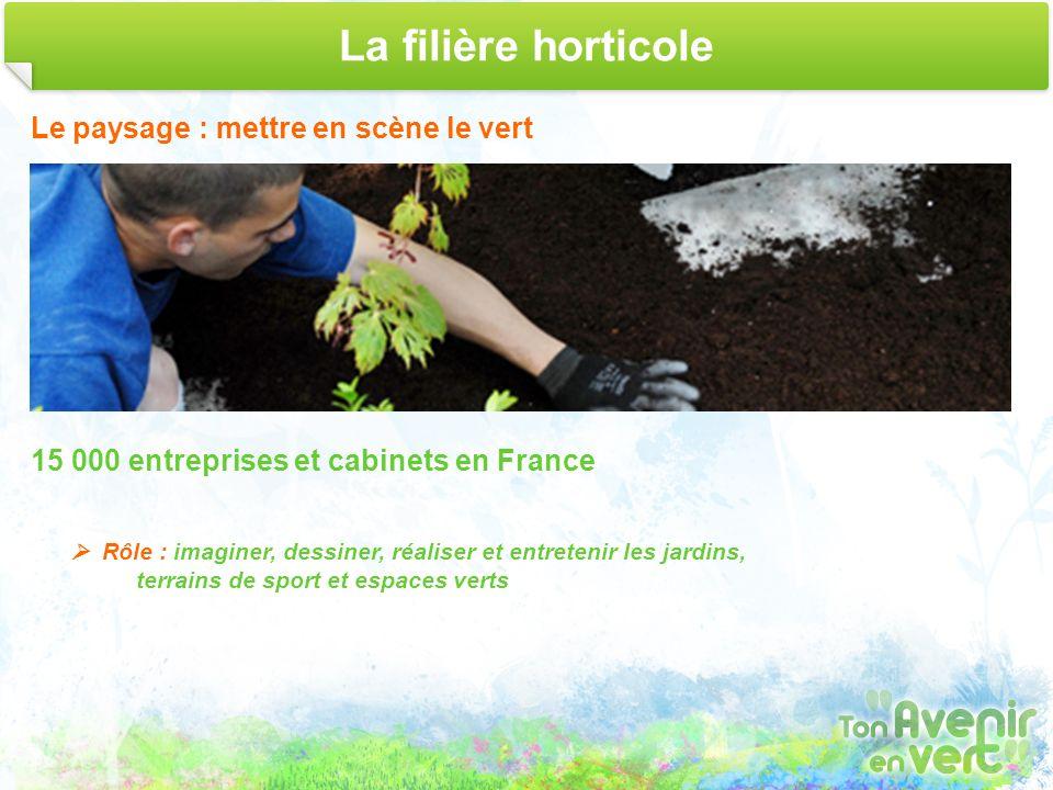 La filière horticole Le paysage : mettre en scène le vert 15 000 entreprises et cabinets en France Rôle : imaginer, dessiner, réaliser et entretenir l