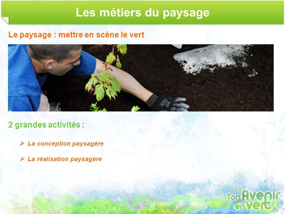 Les métiers du paysage Le paysage : mettre en scène le vert 2 grandes activités : La conception paysagère La réalisation paysagère