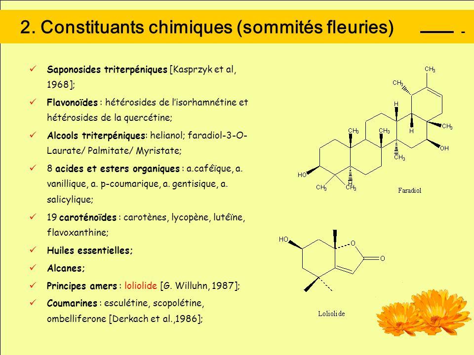 2. Constituants chimiques (sommités fleuries) Saponosides triterpéniques [Kasprzyk et al, 1968]; Flavonoïdes : hétérosides de lisorhamnétine et hétéro