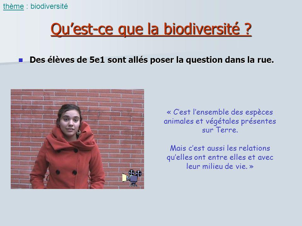 Quest-ce que la biodiversité ? Des élèves de 5e1 sont allés poser la question dans la rue. Des élèves de 5e1 sont allés poser la question dans la rue.