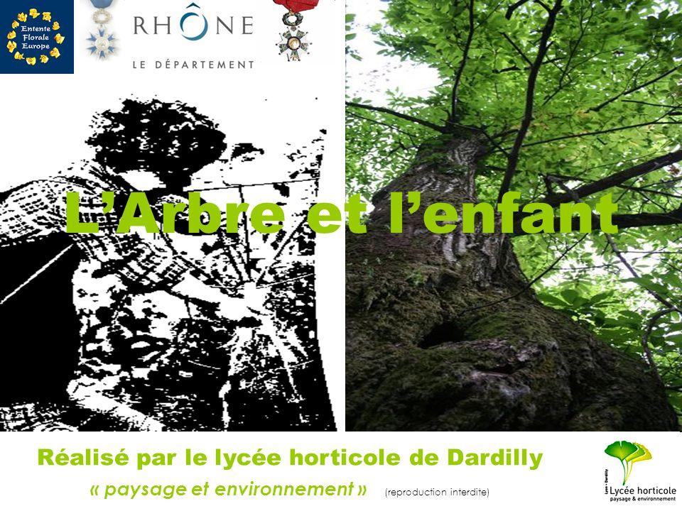 LArbre et lenfant Réalisé par le lycée horticole de Dardilly « paysage et environnement » (reproduction interdite)