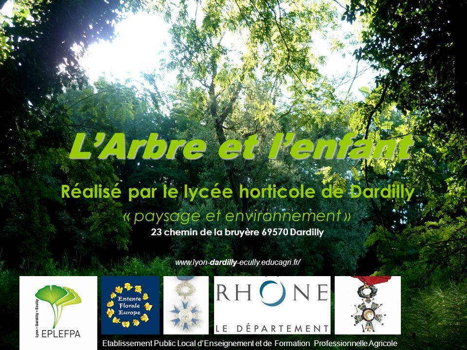 LArbre et lenfant Réalisé par le lycée horticole de Dardilly « paysage et environnement » 23 chemin de la bruyère 69570 Dardilly www.lyon-dardilly-ecu