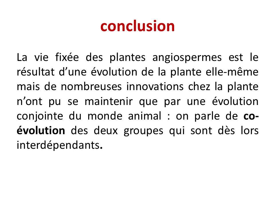 conclusion La vie fixée des plantes angiospermes est le résultat dune évolution de la plante elle-même mais de nombreuses innovations chez la plante n