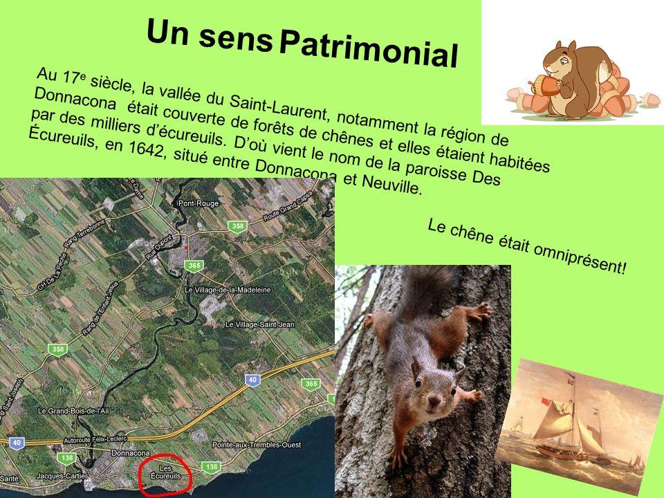 Au 17 e siècle, la vallée du Saint-Laurent, notamment la région de Donnacona était couverte de forêts de chênes et elles étaient habitées par des mill