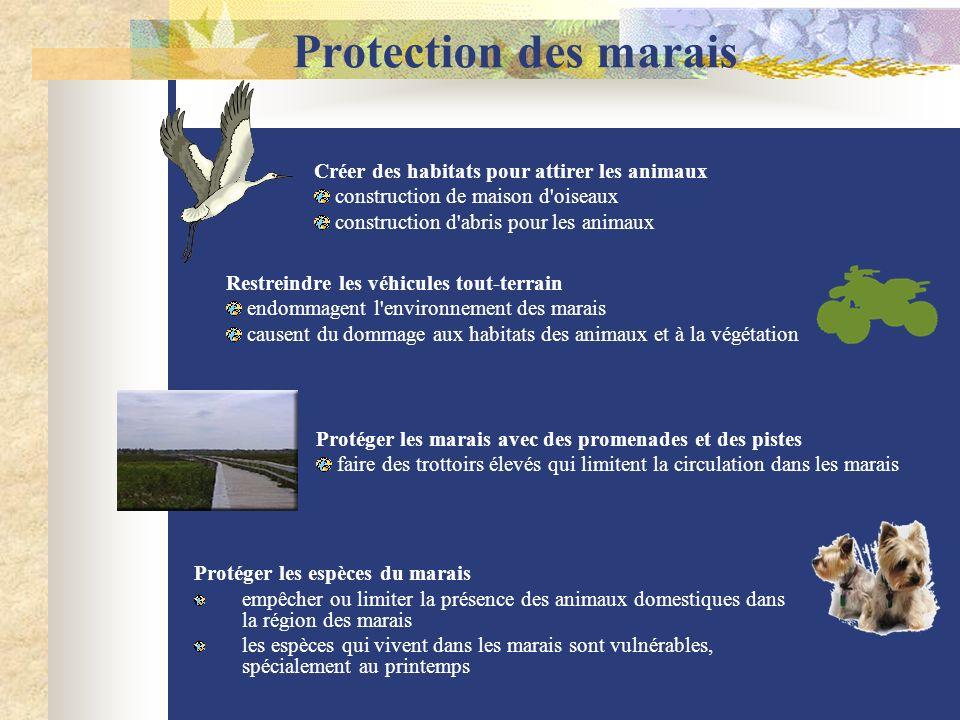 Protection des marais Protéger les espèces du marais empêcher ou limiter la présence des animaux domestiques dans la région des marais les espèces qui