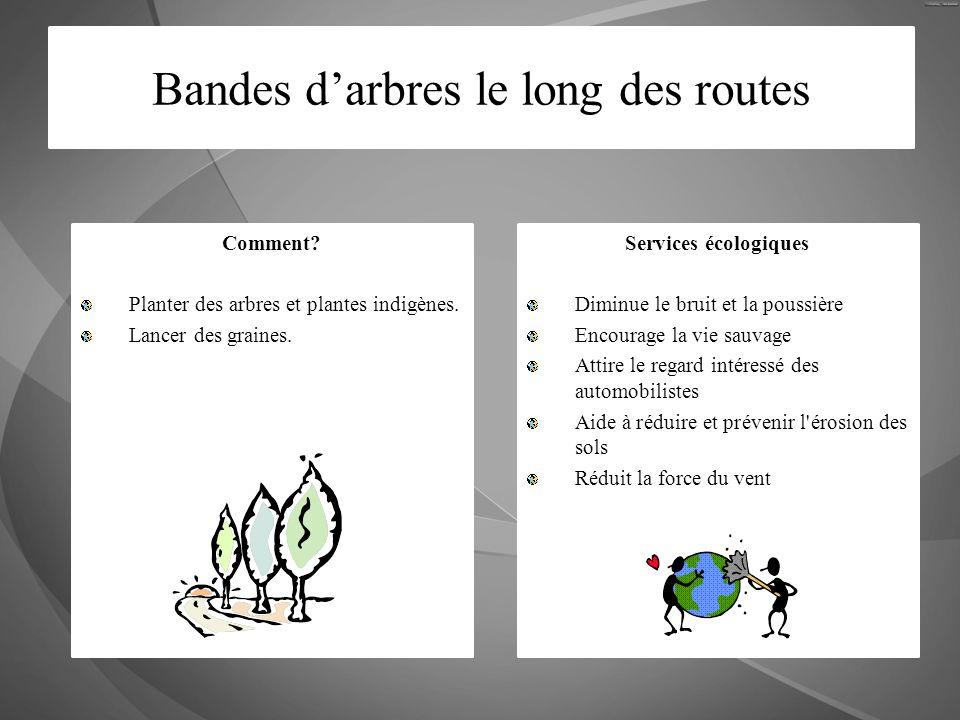 Bandes darbres le long des routes Comment? Planter des arbres et plantes indigènes. Lancer des graines. Services écologiques Diminue le bruit et la po