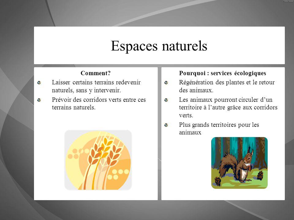 Espaces naturels Comment? Laisser certains terrains redevenir naturels, sans y intervenir. Prévoir des corridors verts entre ces terrains naturels. Po