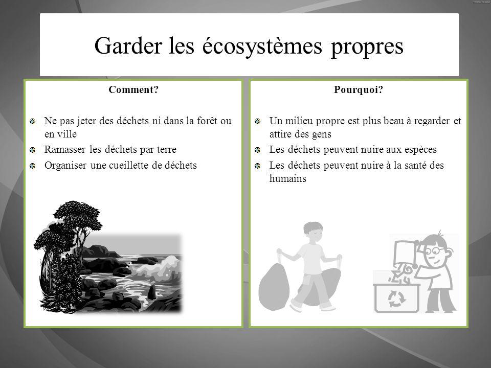 Comment? Ne pas jeter des déchets ni dans la forêt ou en ville Ramasser les déchets par terre Organiser une cueillette de déchets Pourquoi? Un milieu
