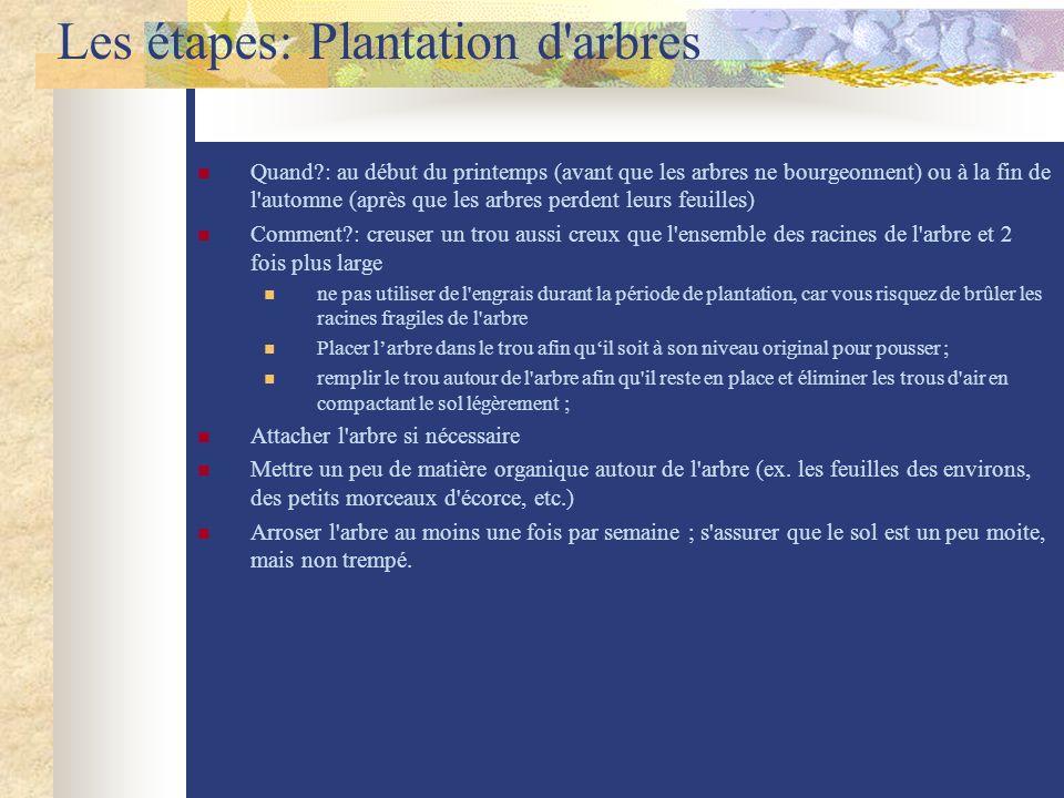 Les étapes: Plantation d'arbres Quand?: au début du printemps (avant que les arbres ne bourgeonnent) ou à la fin de l'automne (après que les arbres pe