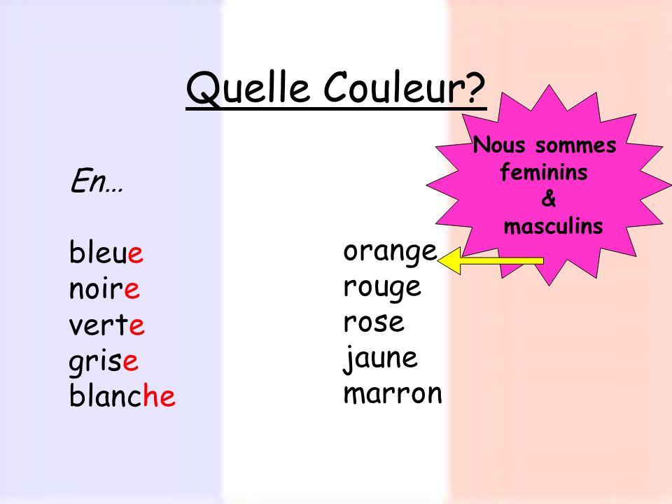 Quelle Couleur? En… bleue noire verte grise blanche orange rouge rose jaune marron Nous sommes feminins & masculins