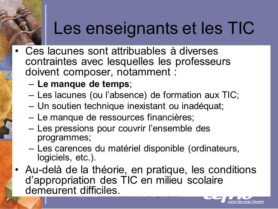 Michel Audet, SOFAD, 1 juin 2005 Les enseignants et les TIC Ces lacunes sont attribuables à diverses contraintes avec lesquelles les professeurs doive