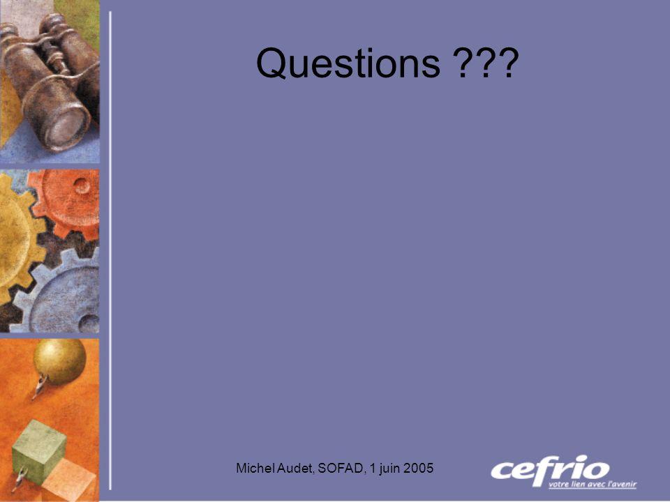 Michel Audet, SOFAD, 1 juin 2005 Questions ???