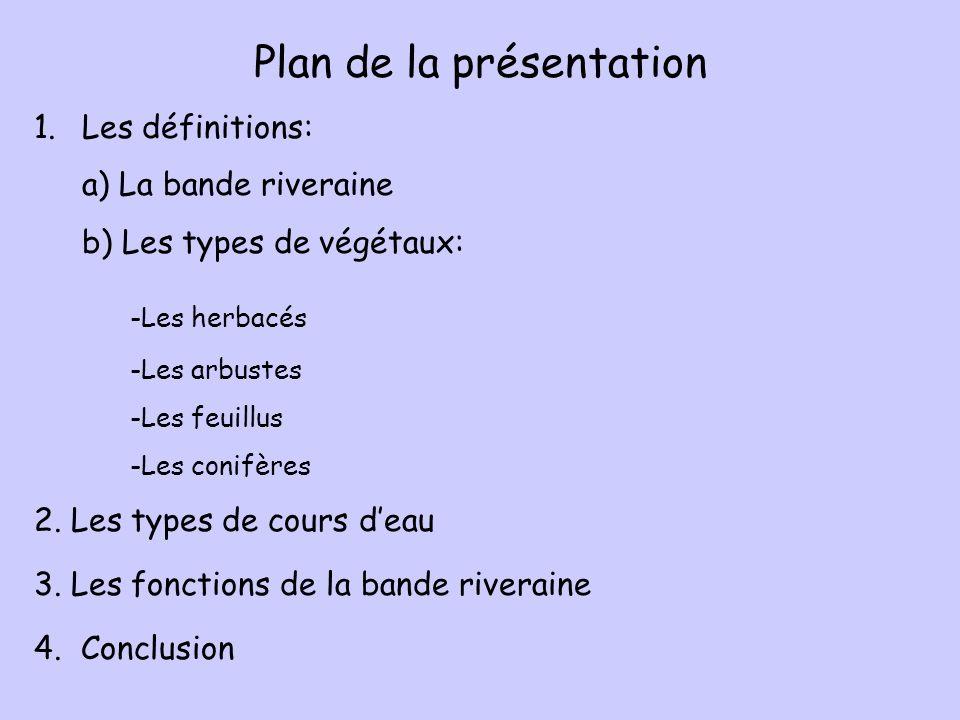 Plan de la présentation 1.Les définitions: a) La bande riveraine b) Les types de végétaux: -Les herbacés -Les arbustes -Les feuillus -Les conifères 2.