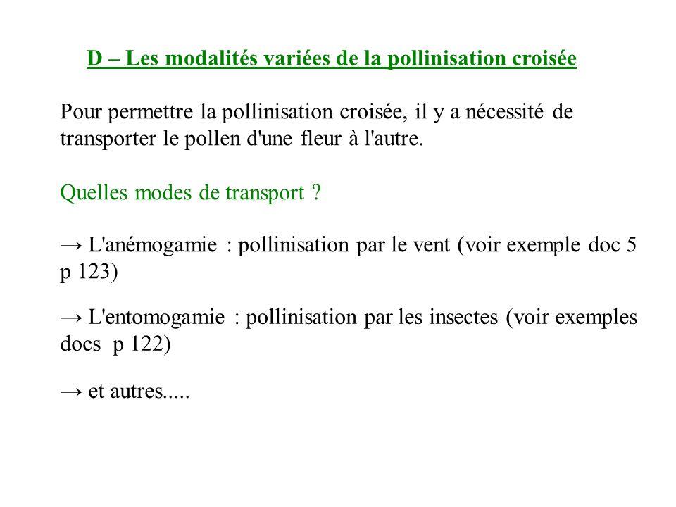 D – Les modalités variées de la pollinisation croisée L anémogamie : pollinisation par le vent (voir exemple doc 5 p 123) Pour permettre la pollinisation croisée, il y a nécessité de transporter le pollen d une fleur à l autre.