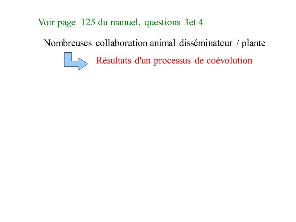 Voir page 125 du manuel, questions 3et 4 Nombreuses collaboration animal disséminateur / plante Résultats d un processus de coévolution