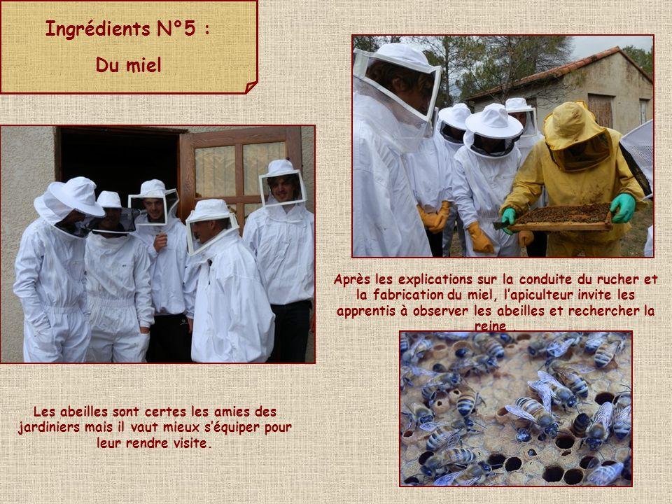 Ingrédients N°5 : Du miel Les abeilles sont certes les amies des jardiniers mais il vaut mieux séquiper pour leur rendre visite. Après les explication