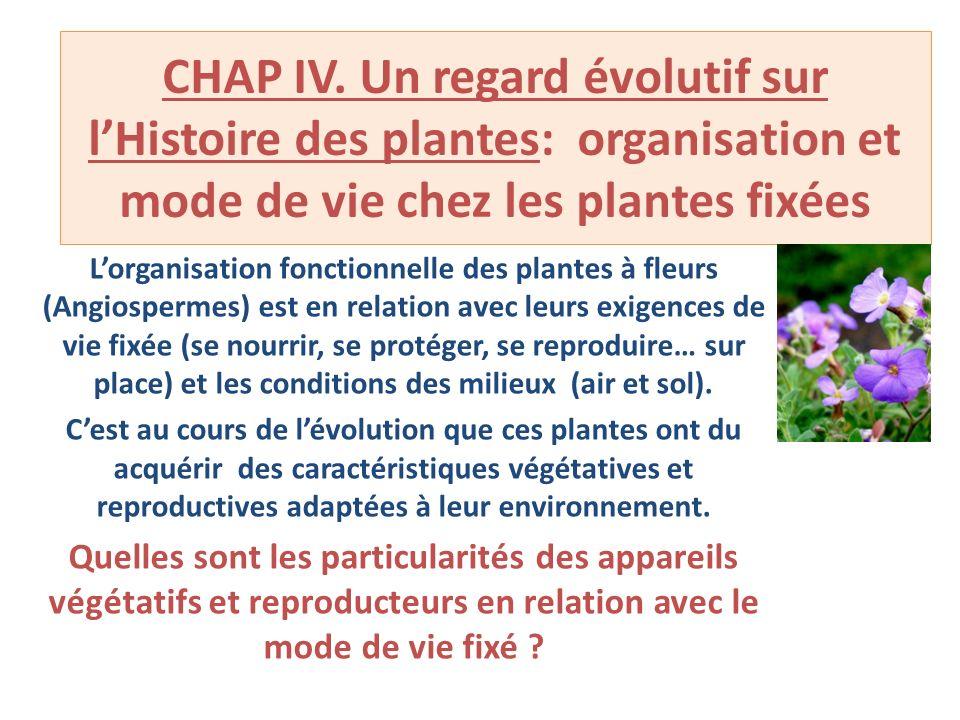 CHAP IV. Un regard évolutif sur lHistoire des plantes: organisation et mode de vie chez les plantes fixées Lorganisation fonctionnelle des plantes à f