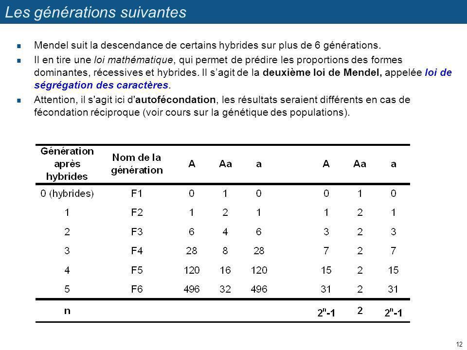 Les générations suivantes Mendel suit la descendance de certains hybrides sur plus de 6 générations. Il en tire une loi mathématique, qui permet de pr