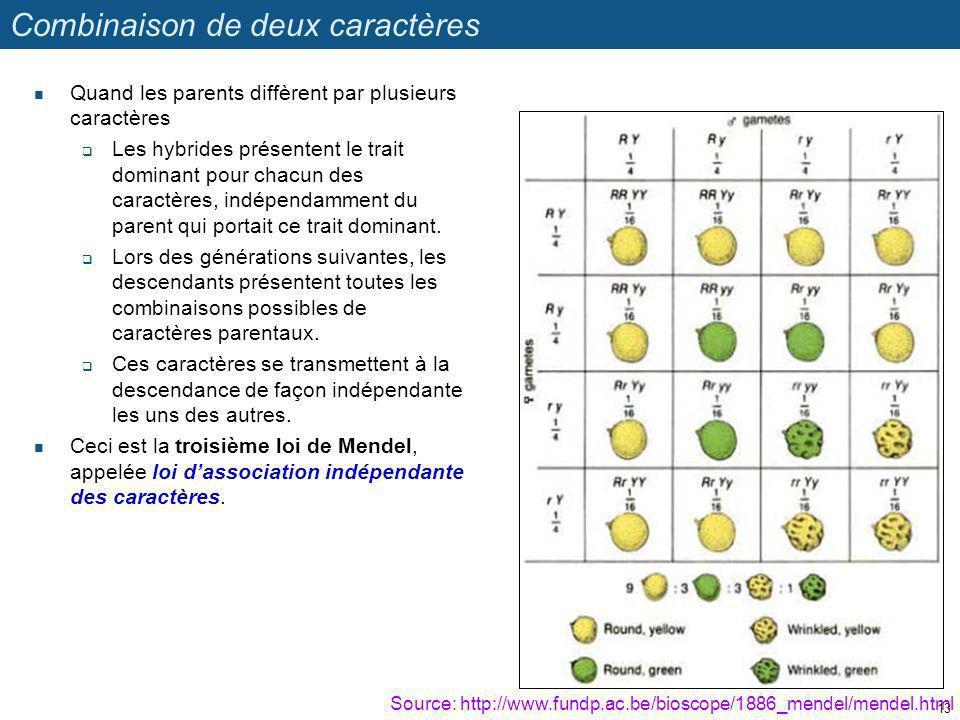 Combinaison de deux caractères Quand les parents diffèrent par plusieurs caractères Les hybrides présentent le trait dominant pour chacun des caractèr