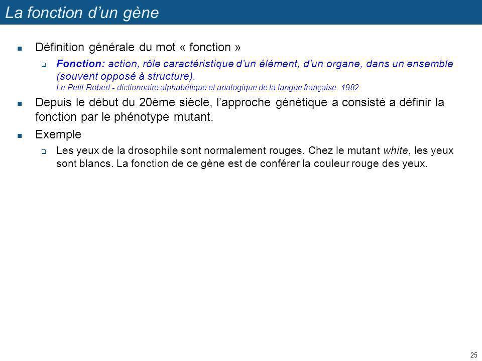 La fonction dun gène Définition générale du mot « fonction » Fonction: action, rôle caractéristique dun élément, dun organe, dans un ensemble (souvent