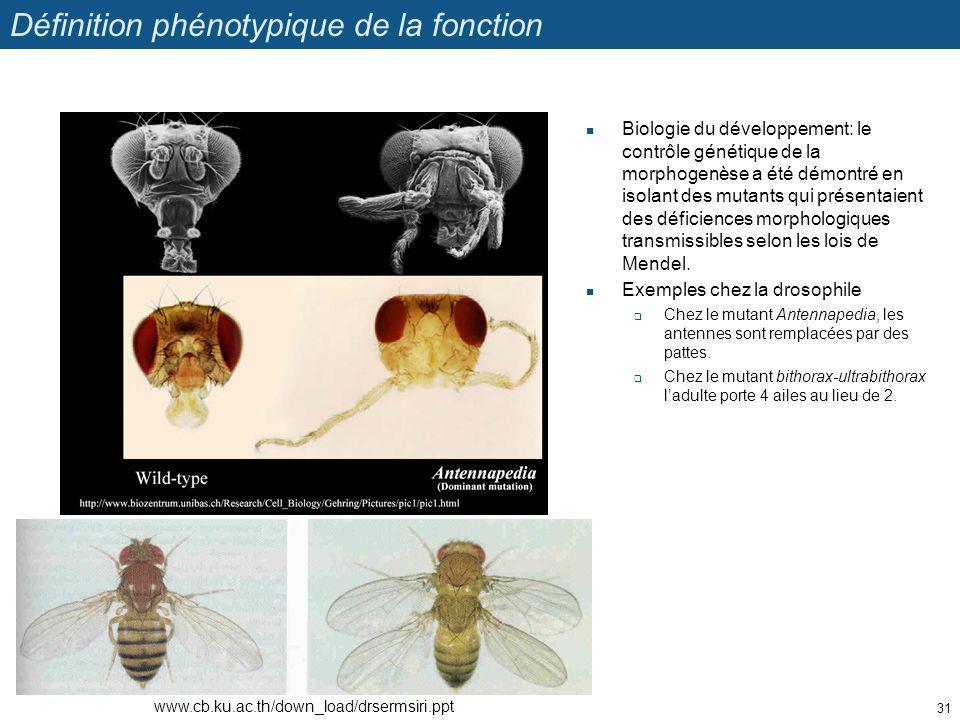 Définition phénotypique de la fonction Biologie du développement: le contrôle génétique de la morphogenèse a été démontré en isolant des mutants qui p