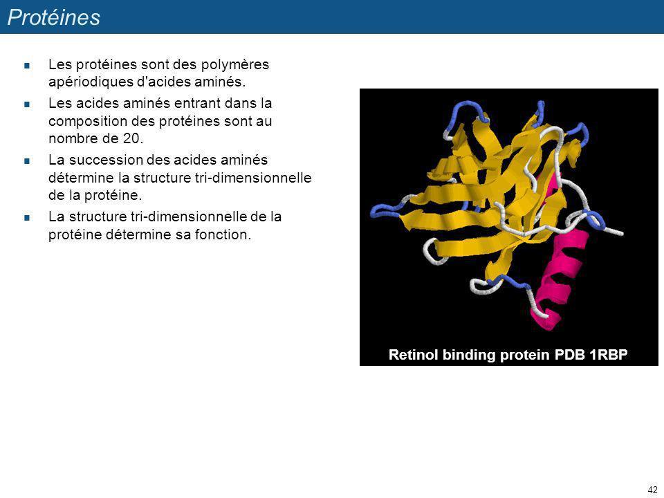Protéines Les protéines sont des polymères apériodiques d'acides aminés. Les acides aminés entrant dans la composition des protéines sont au nombre de
