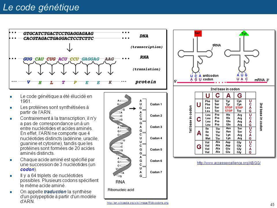 Le code génétique Le code génétique a été élucidé en 1961. Les protéines sont synthétisées à partir de l'ARN. Contrairement à la transcription, il n'y