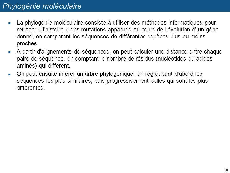 Phylogénie moléculaire La phylogénie moléculaire consiste à utiliser des méthodes informatiques pour retracer « lhistoire » des mutations apparues au