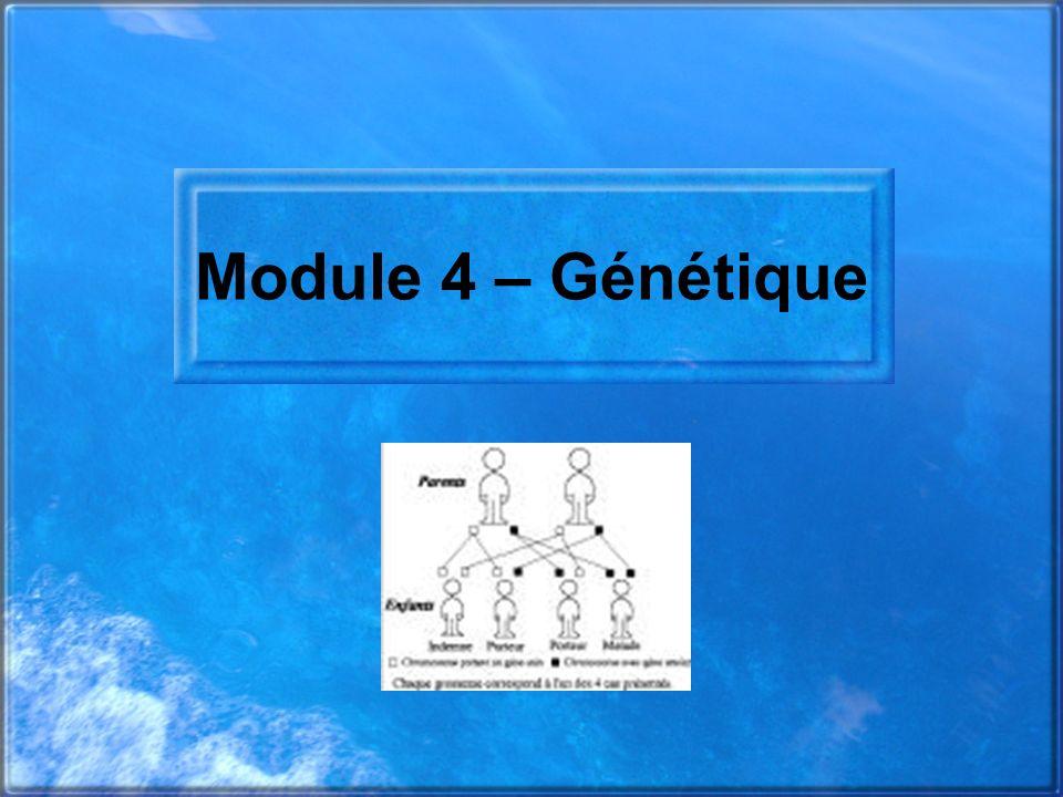 Module 4 – Génétique