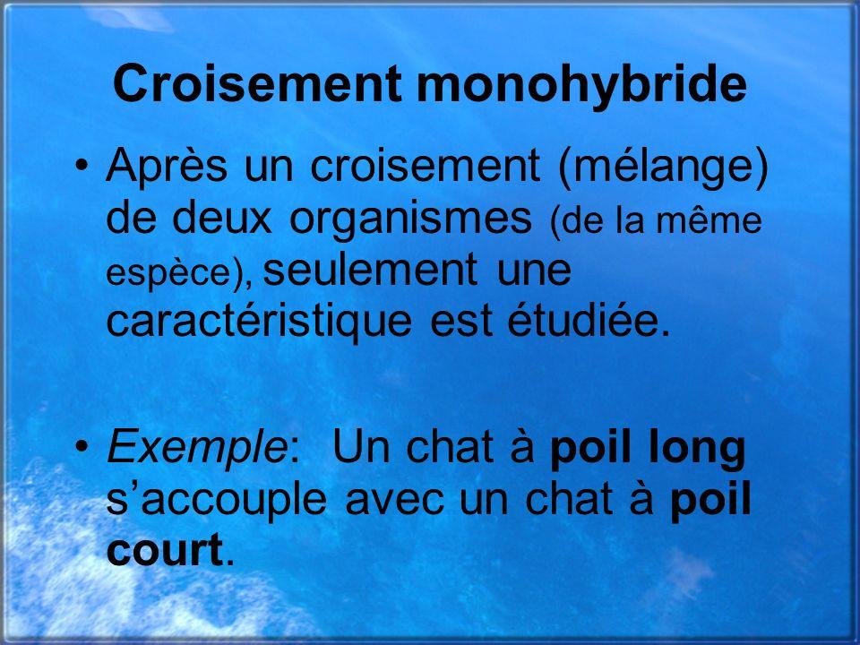 Croisement monohybride Après un croisement (mélange) de deux organismes (de la même espèce), seulement une caractéristique est étudiée. Exemple: Un ch
