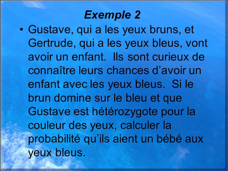 Exemple 2 Gustave, qui a les yeux bruns, et Gertrude, qui a les yeux bleus, vont avoir un enfant. Ils sont curieux de connaître leurs chances davoir u
