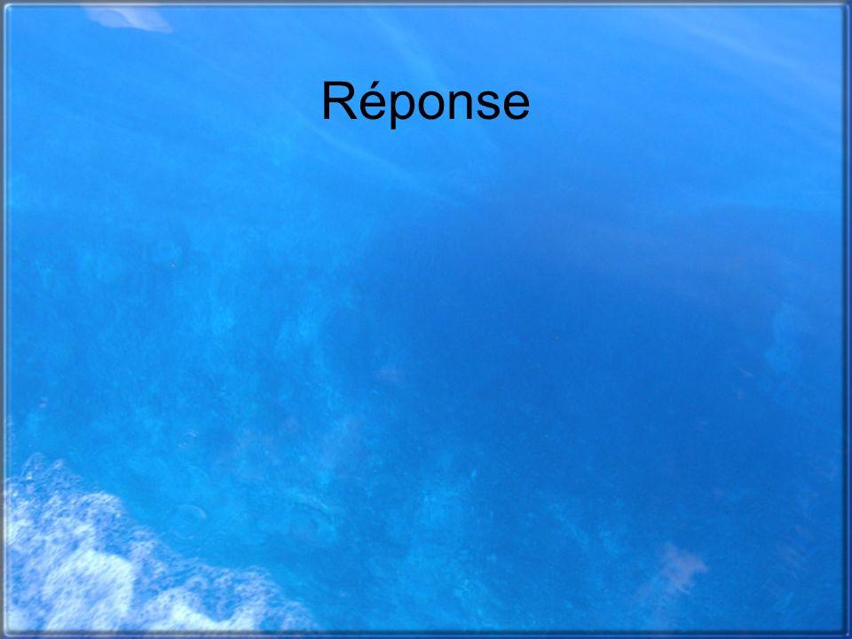 Réponse
