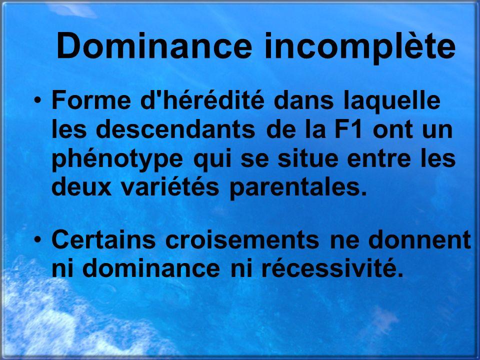 Dominance incomplète Forme d'hérédité dans laquelle les descendants de la F1 ont un phénotype qui se situe entre les deux variétés parentales. Certain