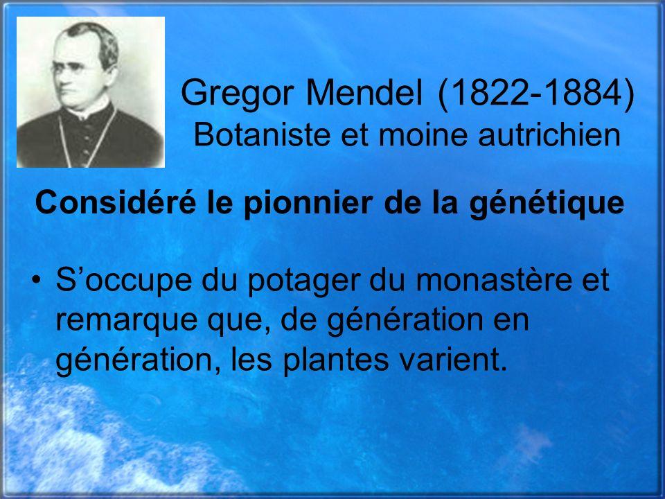Gregor Mendel (1822-1884) Botaniste et moine autrichien Soccupe du potager du monastère et remarque que, de génération en génération, les plantes vari
