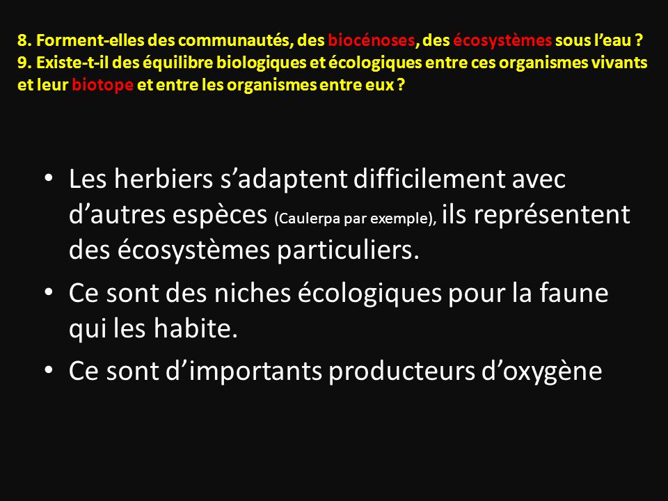 8. Forment-elles des communautés, des biocénoses, des écosystèmes sous leau ? 9. Existe-t-il des équilibre biologiques et écologiques entre ces organi