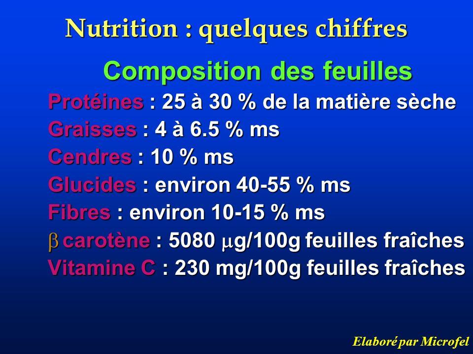 Nutrition : quelques chiffres Composition des feuilles Protéines : 25 à 30 % de la matière sèche Graisses : 4 à 6.5 % ms Cendres : 10 % ms Glucides :
