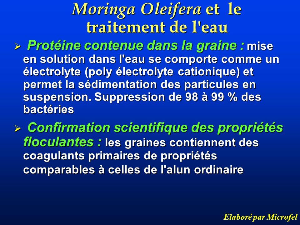 Moringa Oleifera et le traitement de l'eau Elaboré par Microfel Protéine contenue dans la graine : mise en solution dans l'eau se comporte comme un él