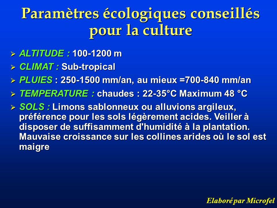 Paramètres écologiques conseillés pour la culture Elaboré par Microfel ALTITUDE : 100-1200 m ALTITUDE : 100-1200 m CLIMAT : Sub-tropical CLIMAT : Sub-