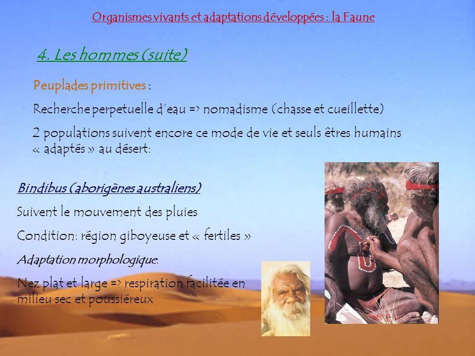 Organismes vivants et adaptations développées : la Faune Peuplades primitives : Recherche perpetuelle deau => nomadisme (chasse et cueillette) 2 popul