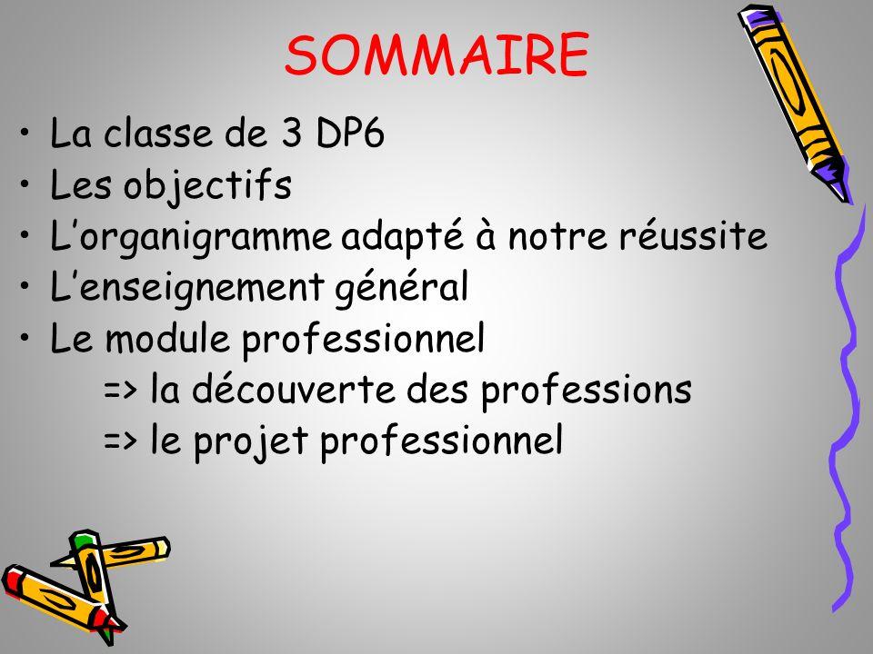 SOMMAIRE La classe de 3 DP6 Les objectifs Lorganigramme adapté à notre réussite Lenseignement général Le module professionnel => la découverte des pro