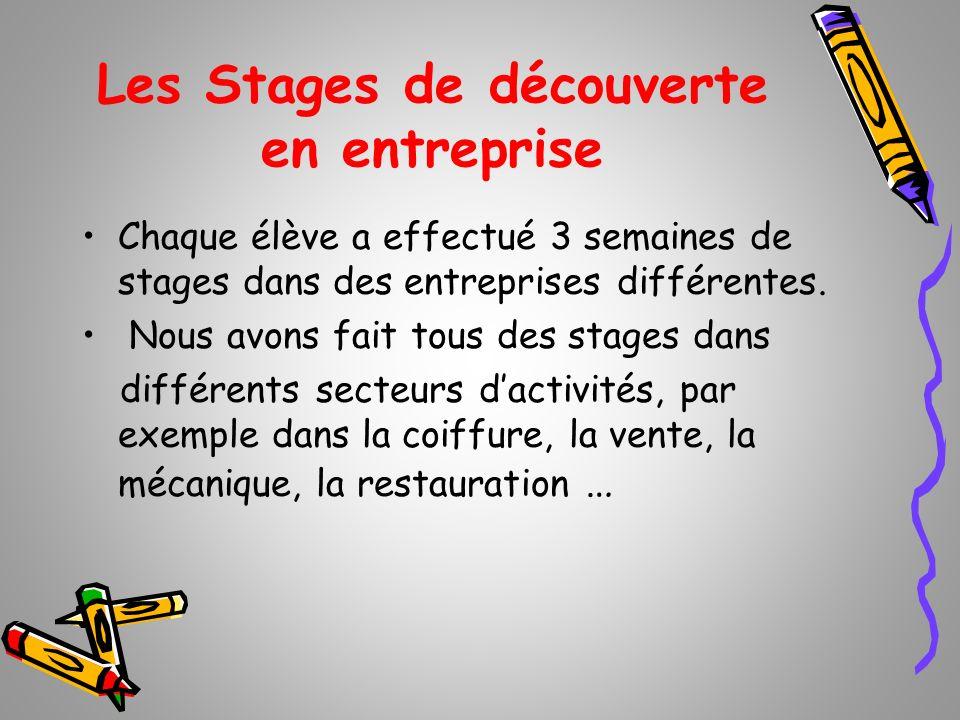 Les Stages de découverte en entreprise Chaque élève a effectué 3 semaines de stages dans des entreprises différentes. Nous avons fait tous des stages